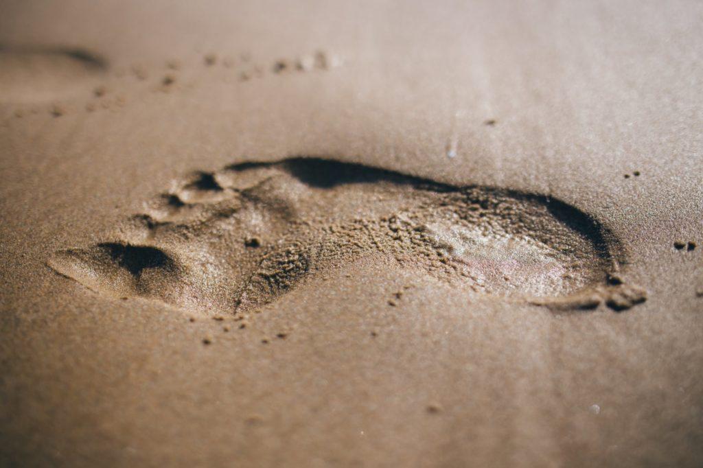 Huella en Chile es el rastro humano más antiguo de América